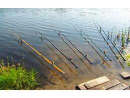 Выбор простой удочки для рыбалки